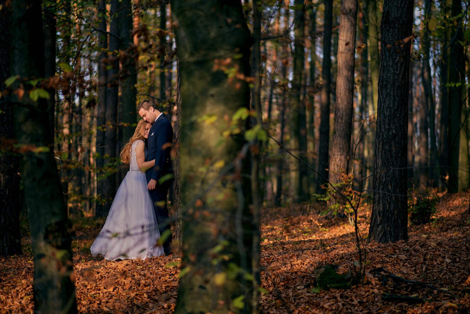 Sesja śłubna w lesie - Fotograf na wesele Rzeszów